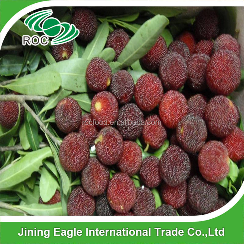 Bayberry yangmei frutas waxberry Fresh medronho