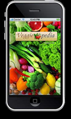 iPhone Разработка приложений компании