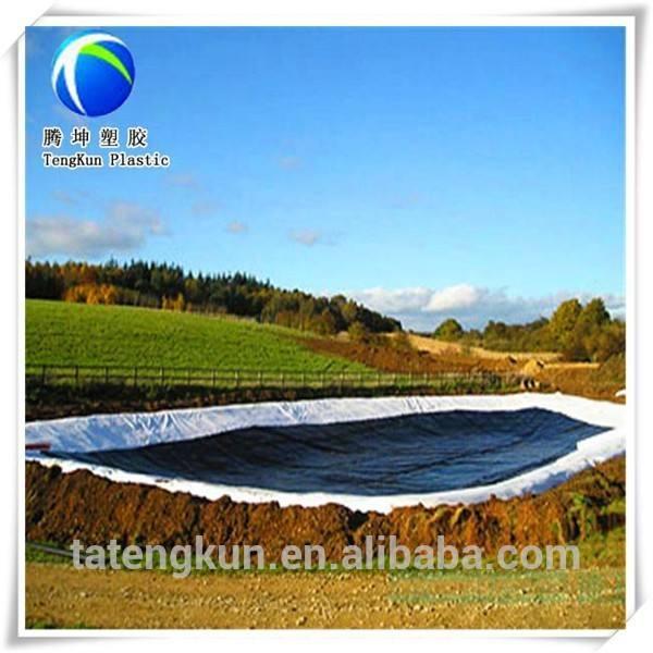 pescado y granja de camarones de revestimiento de geomembrana de polietileno de alta densidad en la acuicultura