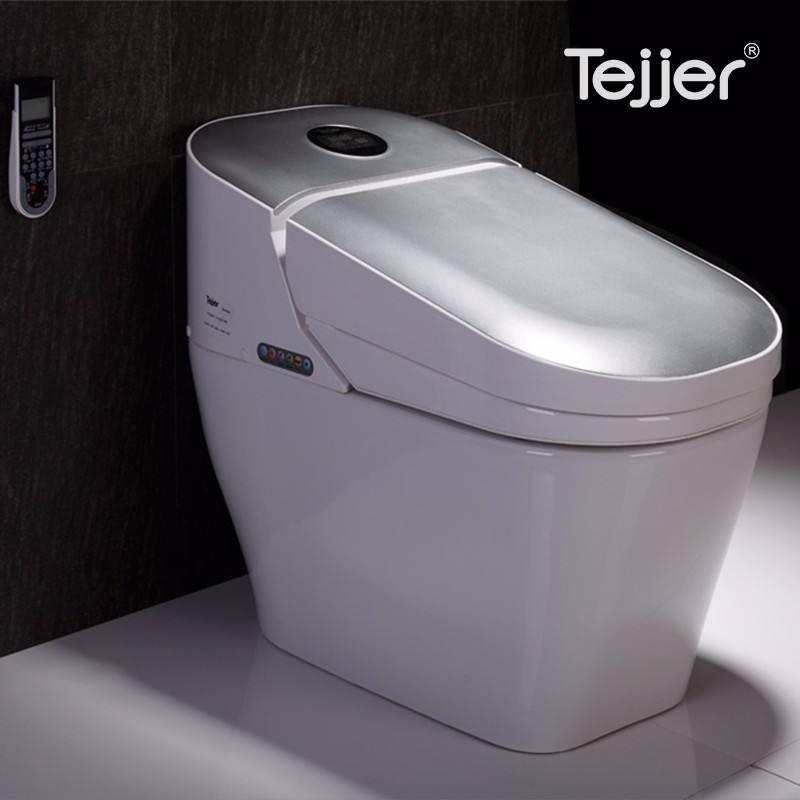 Water proof smart auto limpa banheiro higiênico prata com UL fio elétrico