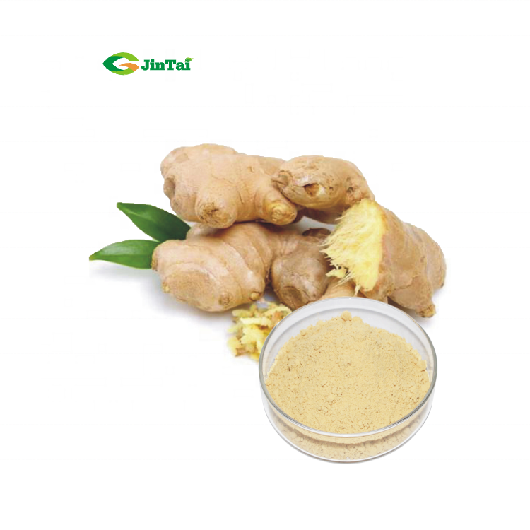 Instant Tea Powder Ginger Sand Ginger Powder Specification Ginger Powder