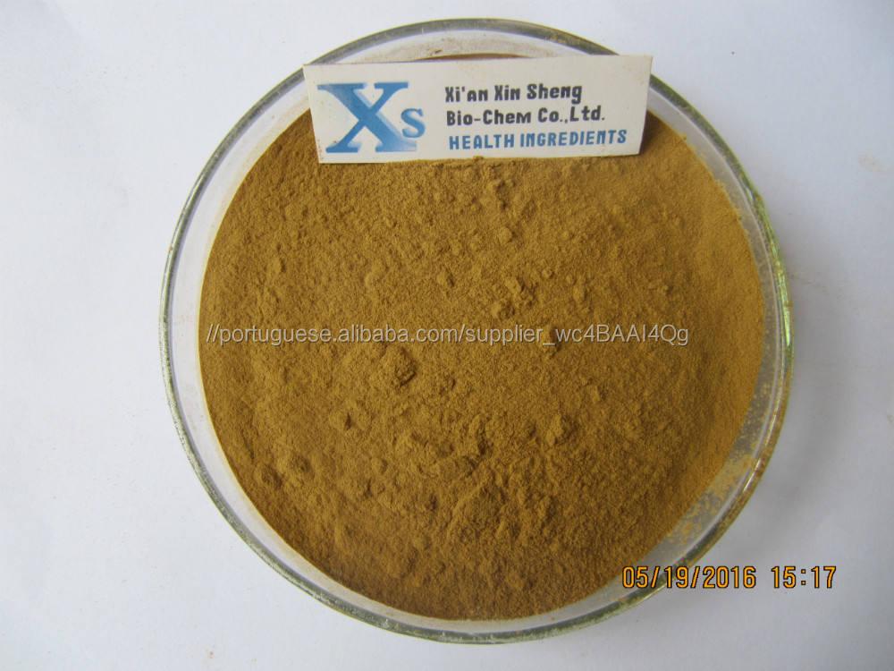 Gmp Corydalis Kosher Natural extrato de raiz