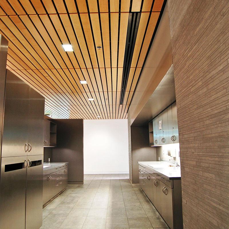 Decorazione dell'interno di Resistenza Al Fuoco Artistico Eco-Legno Falso di Pannello del Soffitto