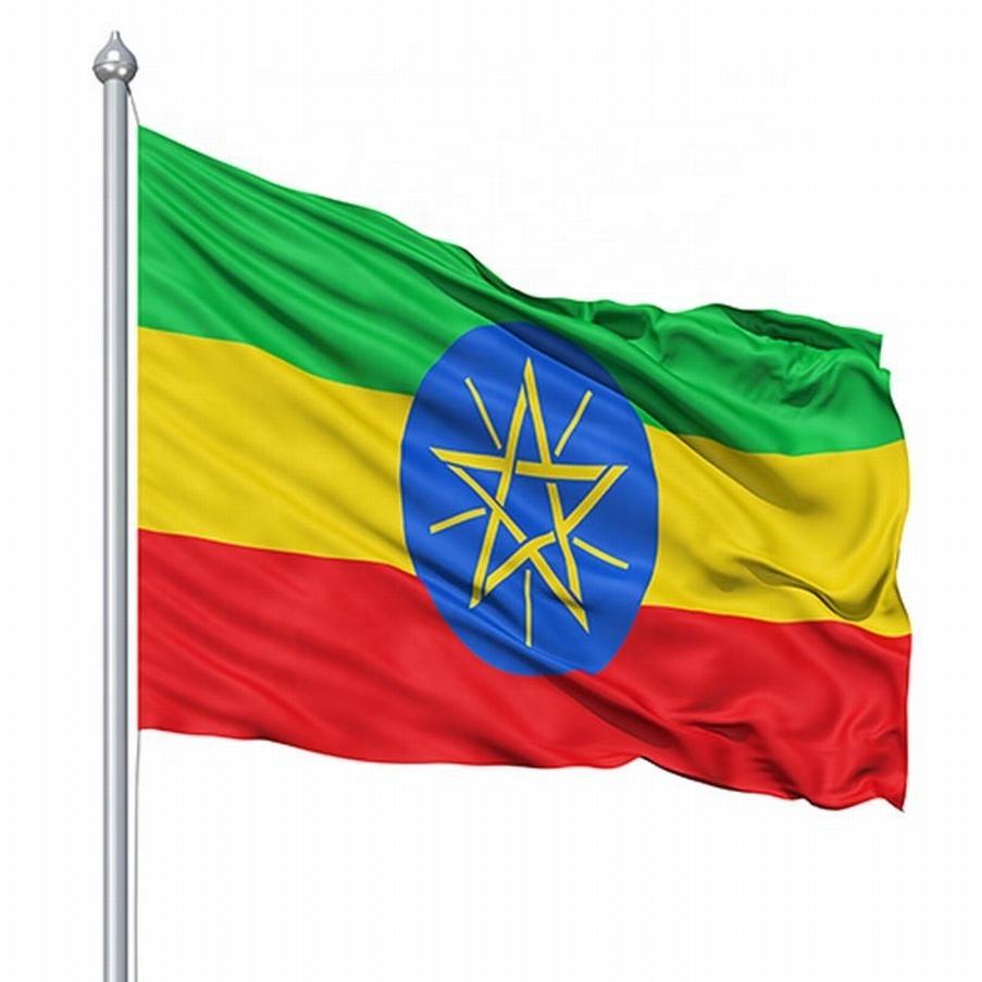 Coupe d'europe personnalisé échantillon gratuit bonne qualité nouveau style fanions plage éthiopien promotion drapeau pôle