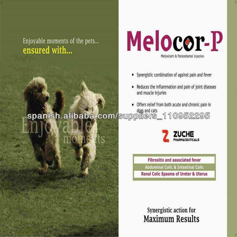 Veterinaria Paracetamol Meloxicam Inyección