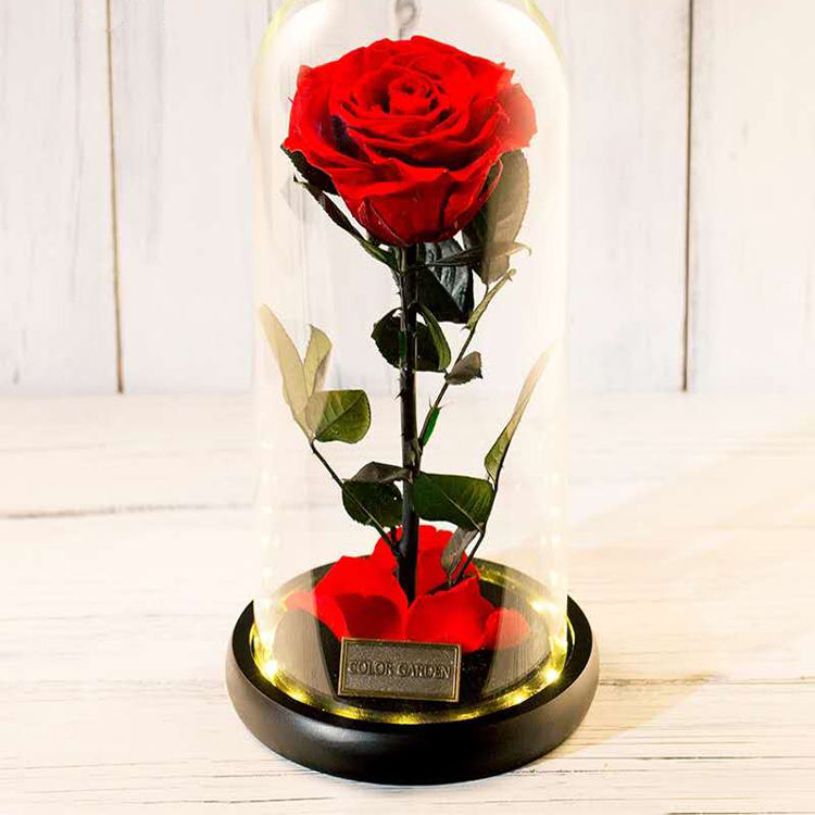 Yunnan wholesale Valentine's Day best gift for girlfriend natural preserved rose with glass