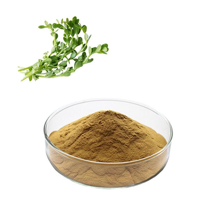 HONGDA фабрика питания органические Purslane порошок Purslane экстракт