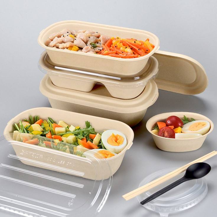 Hot Item PFAS Free Disposable Bento Packaging Box Biodegradable To Go Food Packaging Containers For Restaurant Hotel