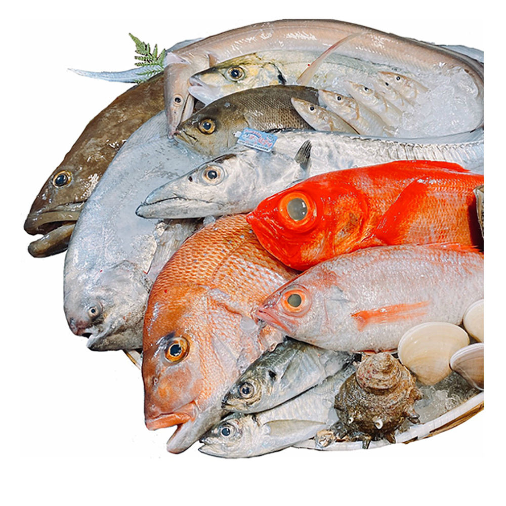 Japan carefully select high-quality whole fresh fish seafood