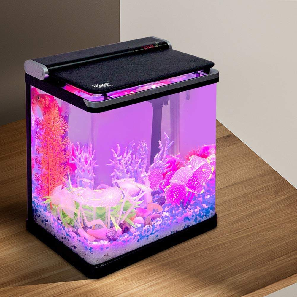 Hygger Smart 4 Gallon Fish Tank Starter Kit Piccolo Desktop di Vetro Acquario con Flip Coperchio di Illuminazione A Led per Betta