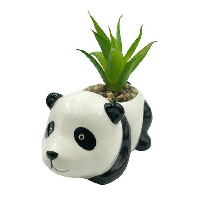 Jardín de cerámica macetas para la decoración del hogar con forma de panda y suculentas