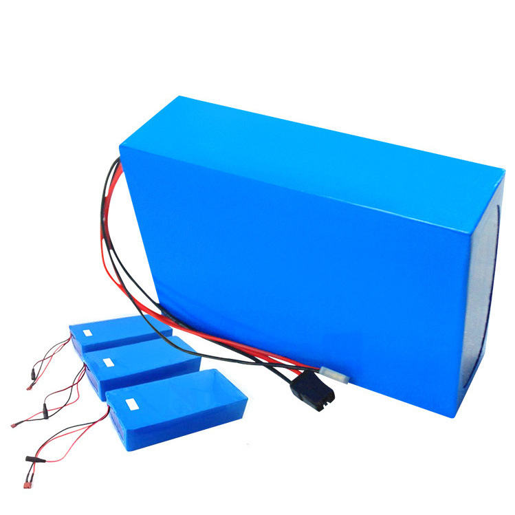 Lithium-batterie 12V 24V 36V 48V 5AH 10AH 15AH 20AH 25AH 100AH batterie pack