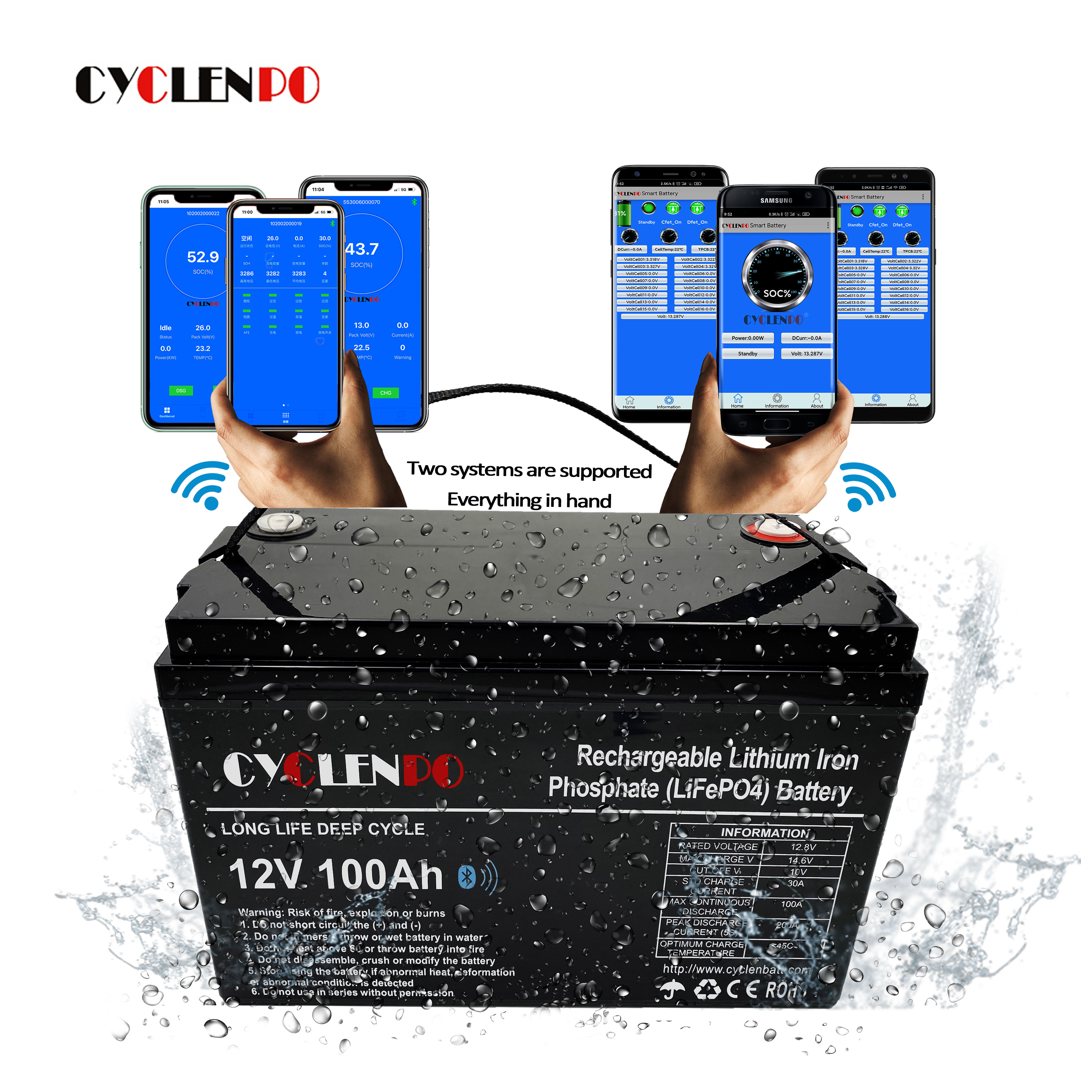 With bt and heated function 12v lithium ion lifepo4 battery 12v 100ah lithium batteries for solar energy system