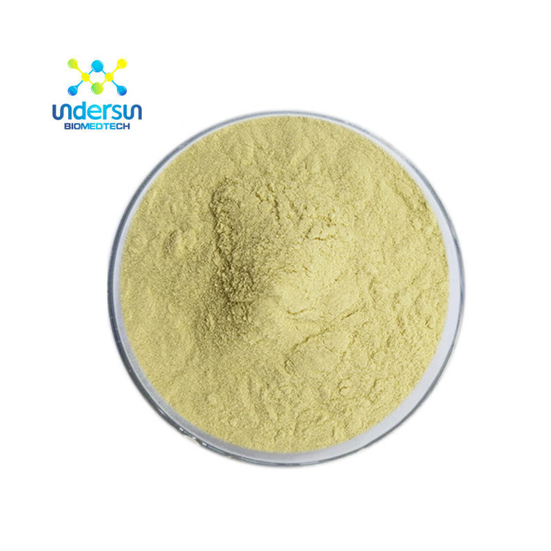 Undersun supply instant tea powder ginger sand ginger powder specification ginger powder