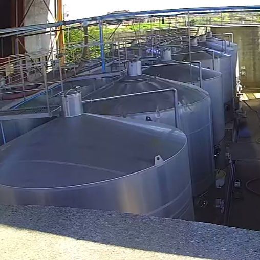 BULK WINE FROM CHILE
