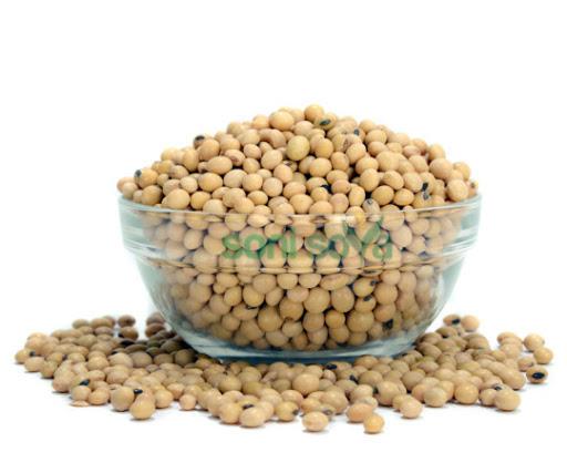 Brazilian Farmers - Non Gmo Soybean (Food Type)