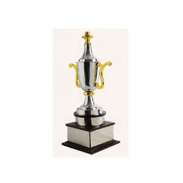 Cricket Match Cup Trophy