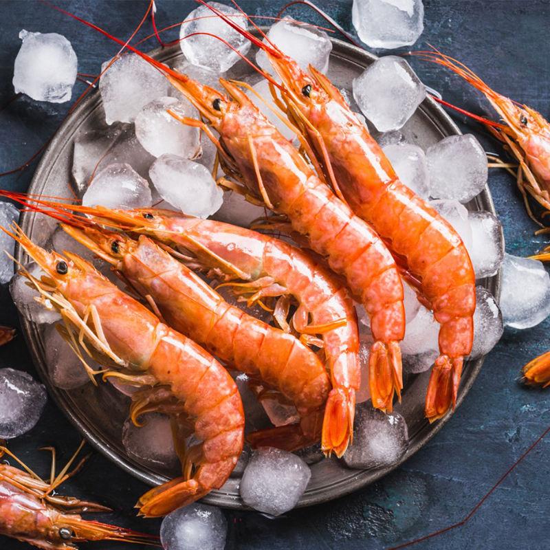 Frozen seafood WILD Red Shrimp